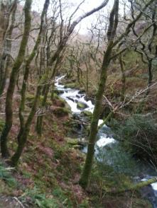 Welsh walk.